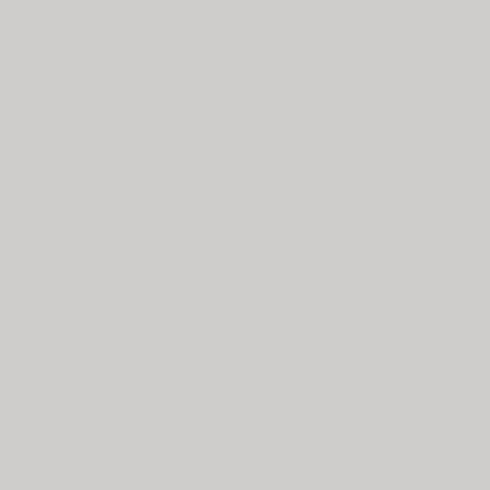 WINSOR & NEWTON PROMARKER BRUSH CG3 COOL GREY 3 2