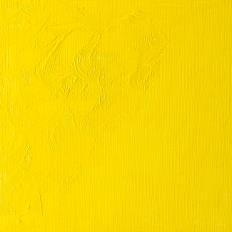 Winton Oil Colour Cadmium Lemon