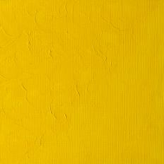 Winton Oil Colour Cadmium Yellow Pale Hue