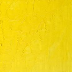 Winton Oil Colour Lemon Yellow Hue