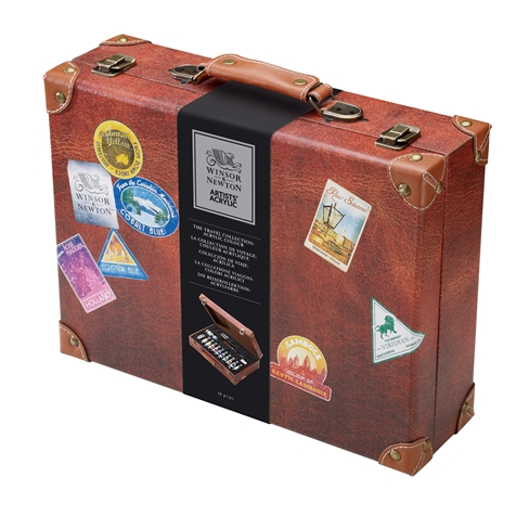 Professional Acrylic Colour Suitcase